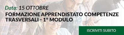 FORMAZIONE APPRENDISTATO COMPETENZE TRASVERSALI - 2° MODULO (INFORMATICA)